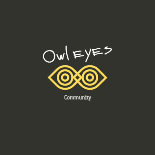 Geometric eyes owl logo