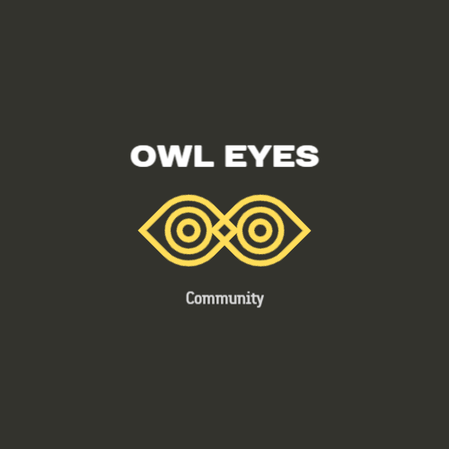 сова глаз логотип