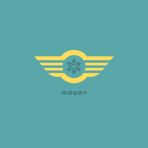 Logo for a flight organization company