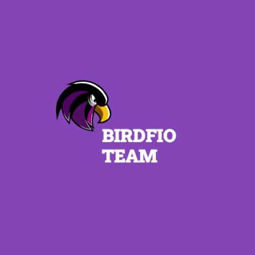 Birdfio Team Лого