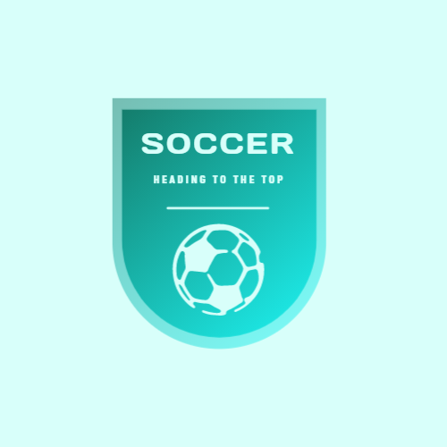 Soccer ball & Shield logo