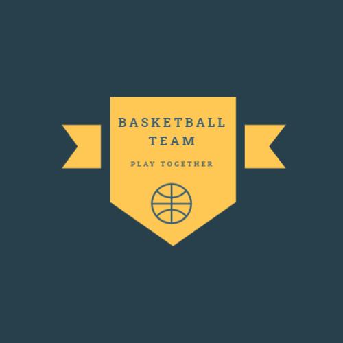 Professional basketball team logo