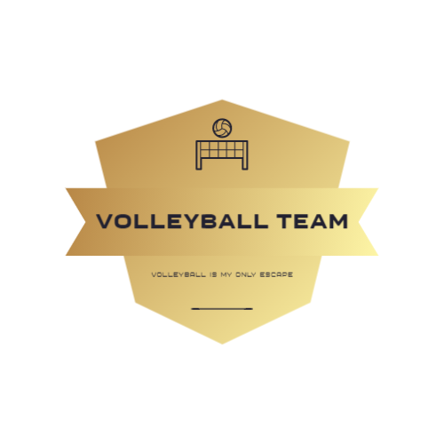 Volleyball Net & Ball logo
