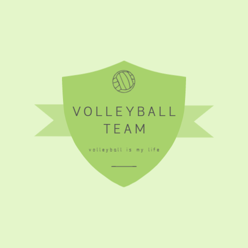 Volleyball team logo with shield